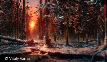 Vitaly Varna Bloody forest 3D contest